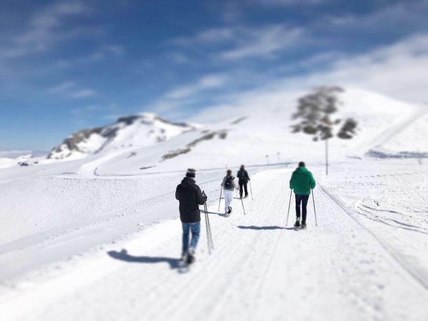 Photo de skieurs de fond au pied d'une montagne enneigée.