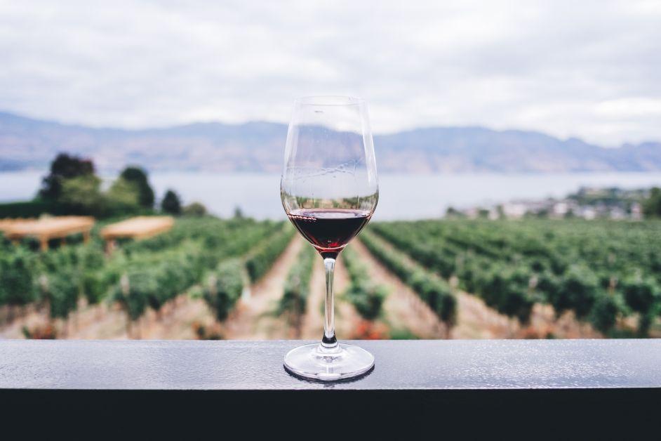 Photo d'un verre de vin.