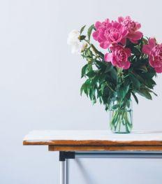 5 bons plans pour les amoureuses des fleurs