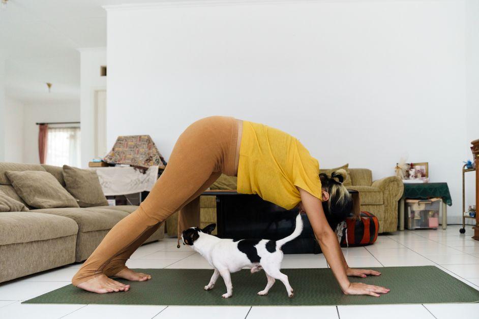 sport grossesse femme enceinte