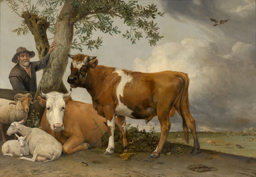 Paulus Potter, The Bull, 1647