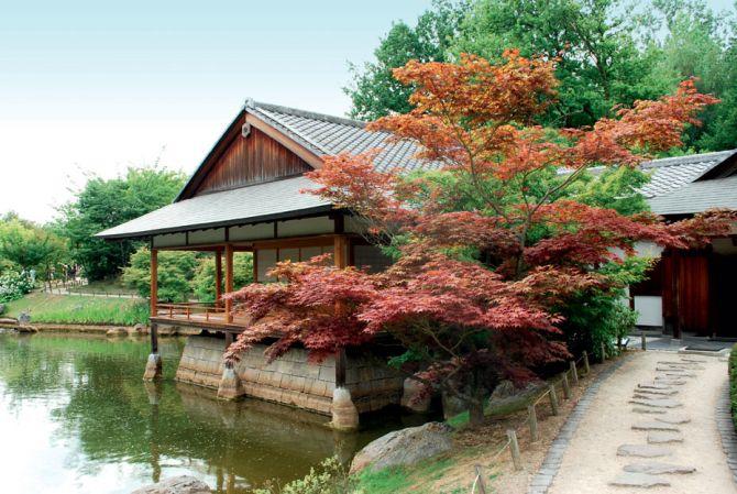 Activités à proximité - Le jardin japonais d'Hasselt