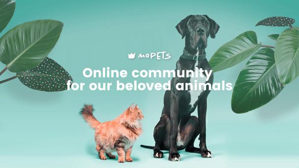 Mopets réseau social animaux