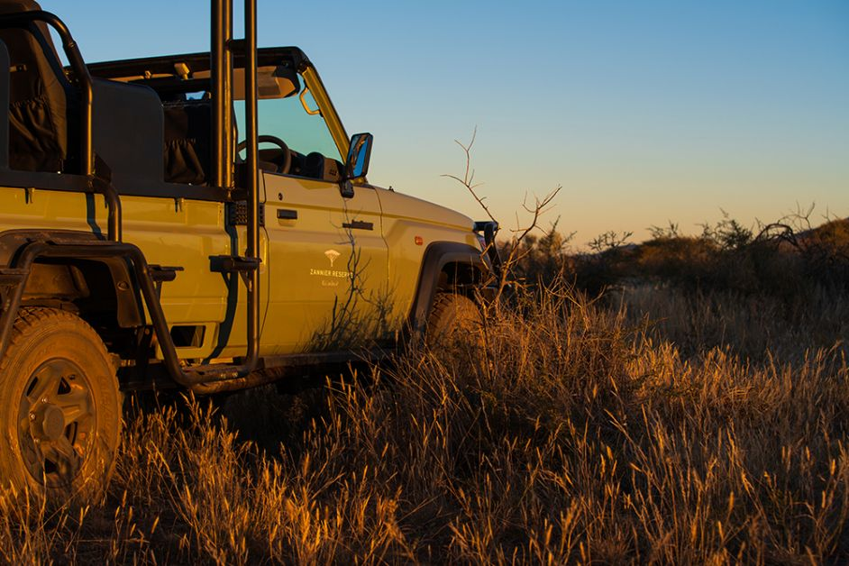 Photo d'une jeep en plein désert