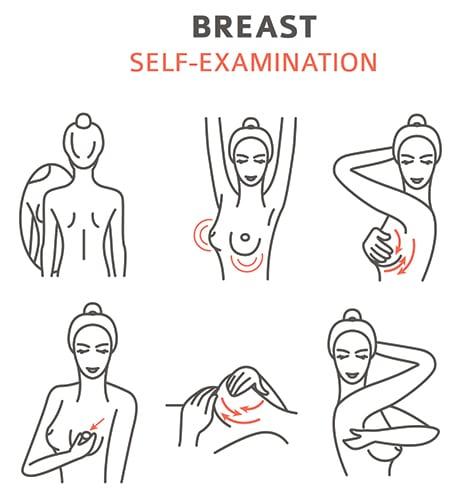 Schéma auto-palpation des seins mode d'emploi.