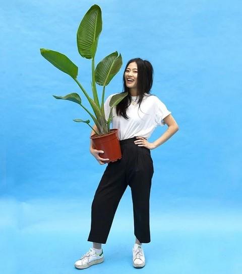 Plantes pour tous : l'event où shopper des plantes à prix mini