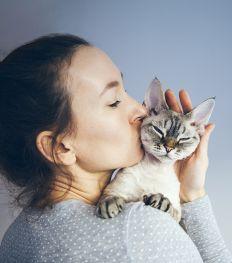 Lush s'associe à CatRescue pour venir en aide aux chats dans le besoin