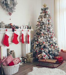 Noël : 6 sapins solidaires à shopper pour faire une bonne action