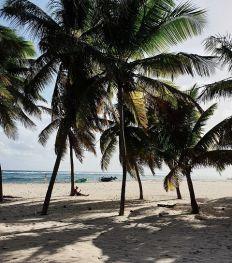 Îles de Guadeloupe : découvrez les 7 plus beaux endroits de l'archipel