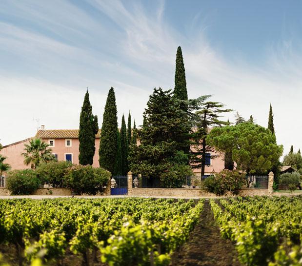 Gérard Bertrand vins bio Cigalus