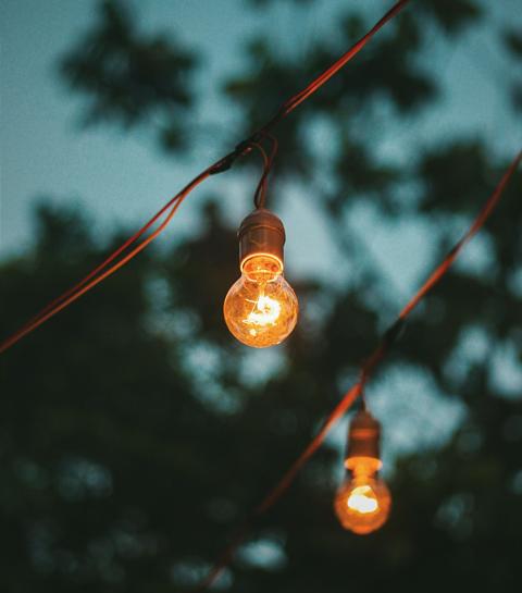 Lanterna Magica: l'événement féérique et artistique dans les bois