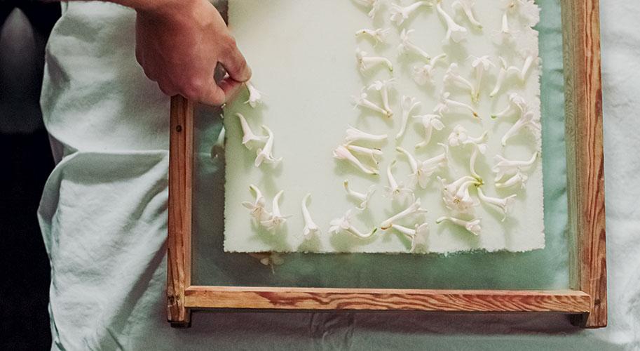 La technique de l'enfleurage est une méthode ancestrale et artisanale réservée aux fleurs  les plus délicates et qui permet d'être au plus près de l'odeur exacte de la fleur qui s'imprègne dans une couche de graisse. Ici pratiquée sur la tubéreuse, uniquement à Grasse et nulle part ailleurs dans le monde.