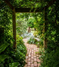 3 conseils de pro pour entretenir et sublimer son jardin en automne/hiver