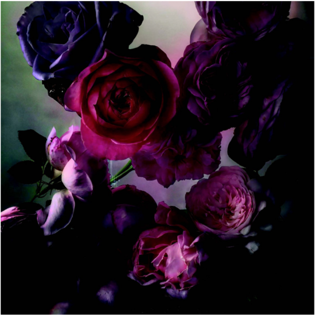 fleurs dior livre