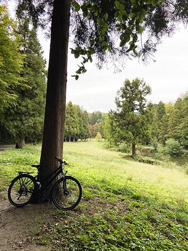 Balade en vélo jusqu'au domaine du Château de La Hulpe.