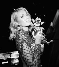 Portrait : Paris Hilton héritière trash au passé trouble