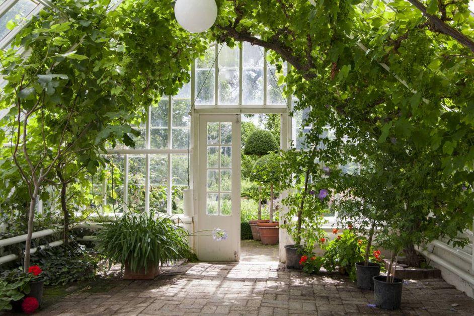 Une serre dans son jardin - 2