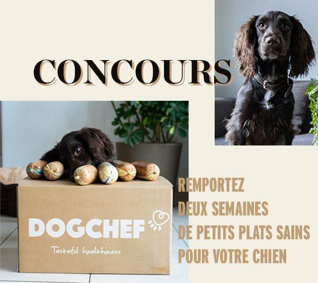 concours Elle à table x Dog Chef