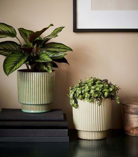 Shopping : les plus beaux cache-pots pour nos plantes d'intérieur