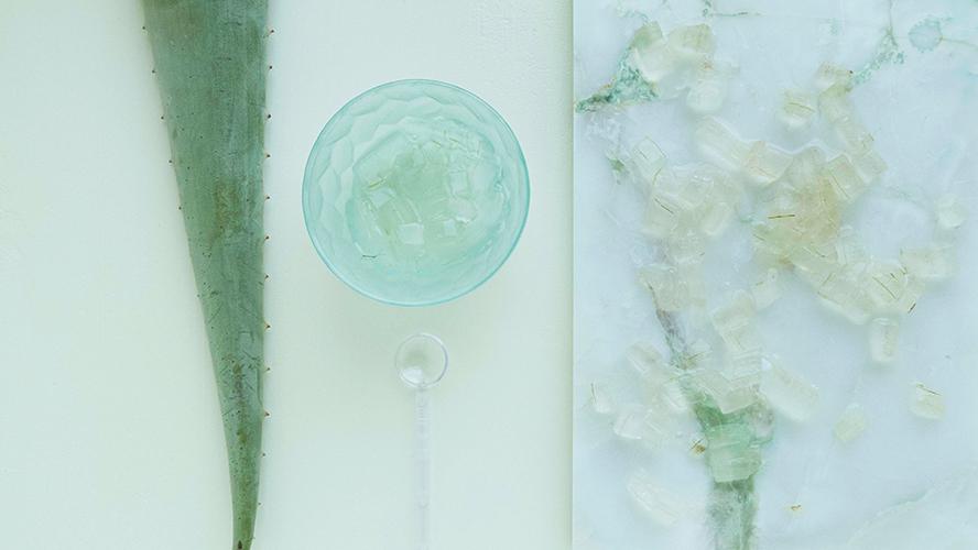 L'aloe vera est une plante souvent utilisée en clean beauty.