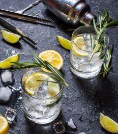 Les meilleurs bars où boire un Gin & Tonic à Bruxelles