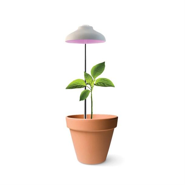 Nature & Découvertes Lampe Horticole