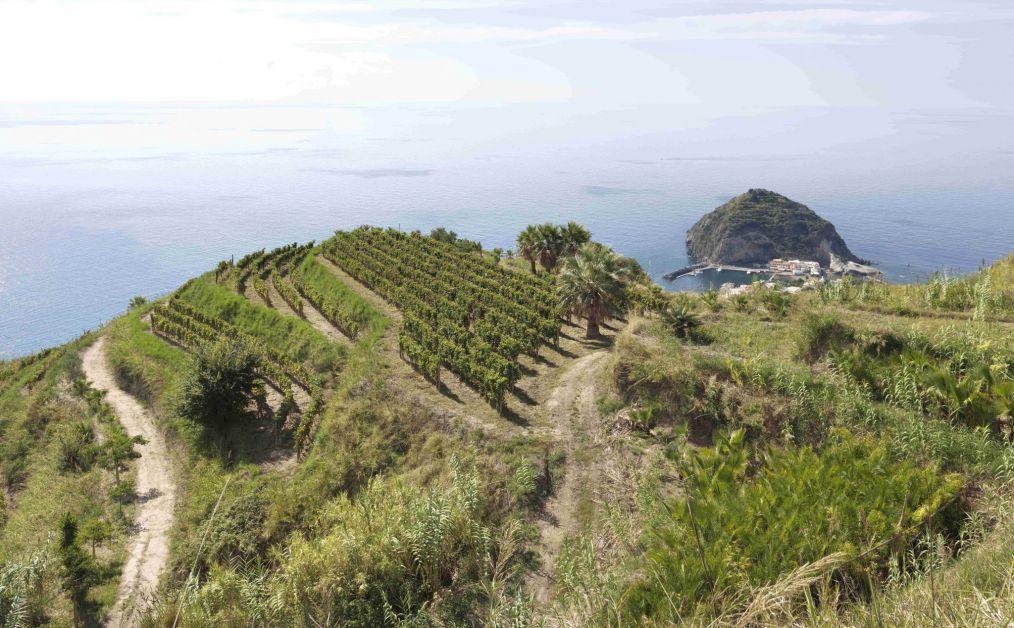 Napels en de Amalfitaanse kust: onze adresjes voor een dolce vita - 1
