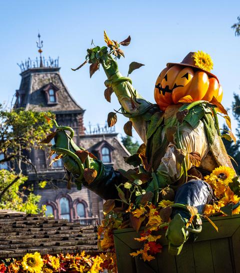 Métier insolite : metteur en scène chez Disneyland Paris