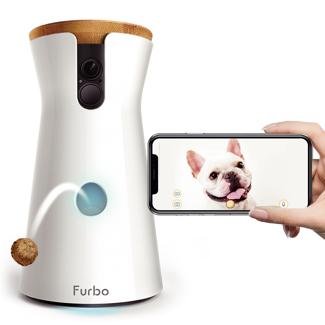 jouets anti-stress pour chiens