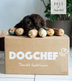 Dit is Belgisch: sterrenvoer voor gezonde honden