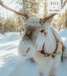 Lapland de perfecte combinatie van rust en actief genieten