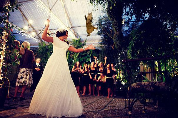 bruidskat2