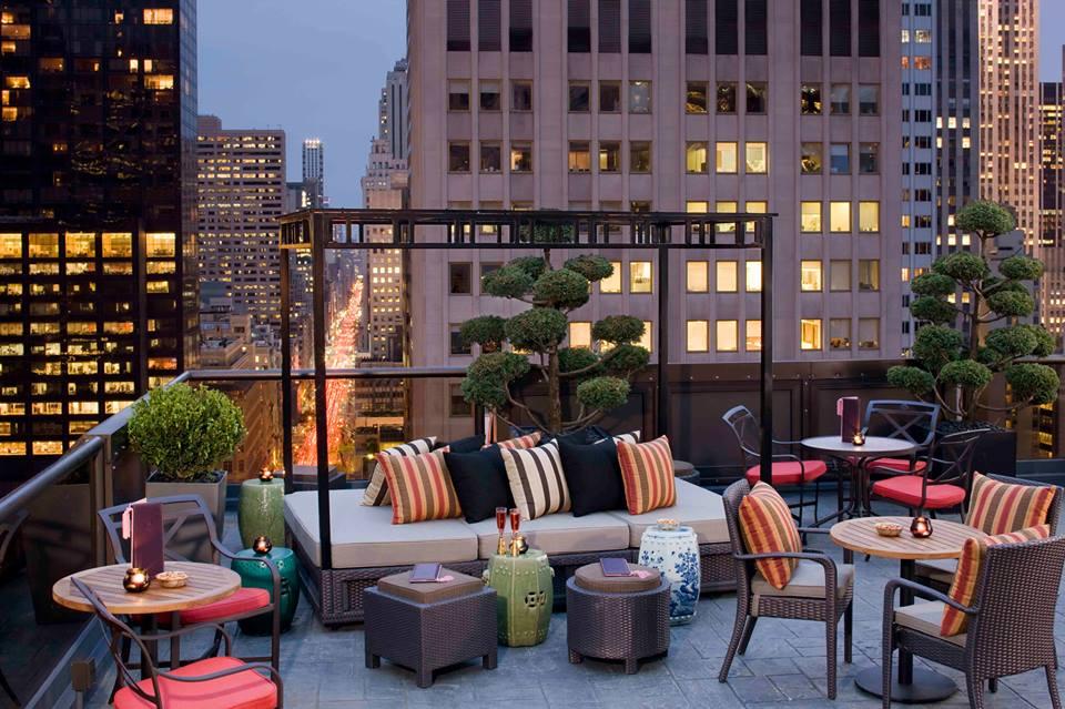 rooftop bar1