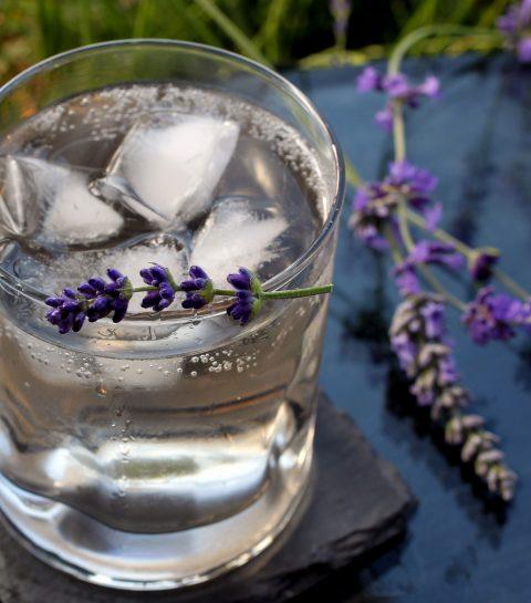 ELLE hotspot: 3 bars om Gin Tonic te drinken