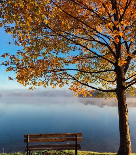 De 10 mooiste plaatsen voor een herfstwandeling in België