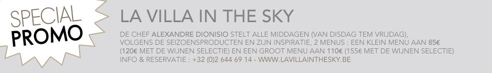 Banner Villa in the sky NL