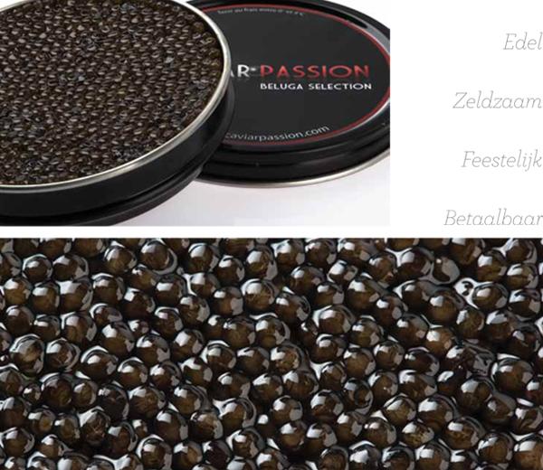 Caviar-Passion-NL