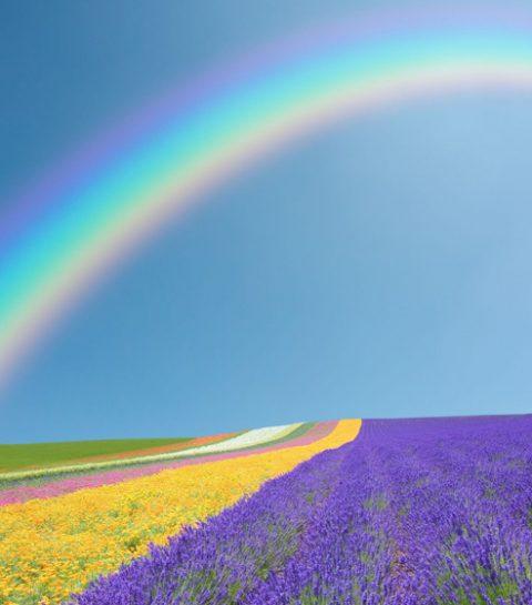 SHOPPING: nagellak in alle kleuren van de regenboog