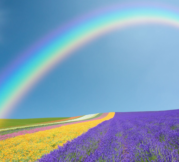 regenboognagellak