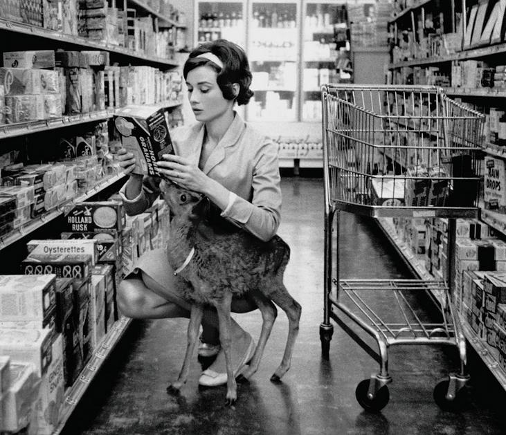 Met Pippin, het hertenkalfje dat ze tijdens de opnames van Green Mansion (1959) adopteerde
