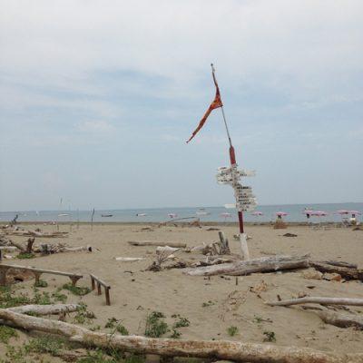 Lido – wild strand Alberoni