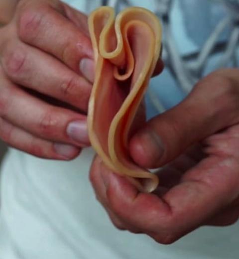 Bizar: Man organiseerde schoonheidswedstrijd voor vagina's