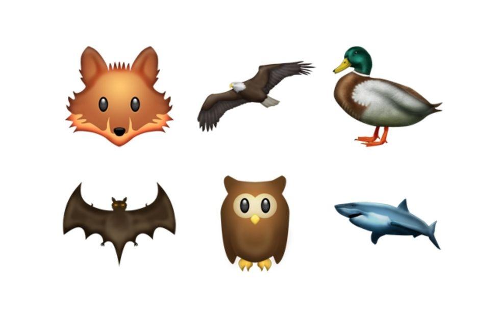 1440425629-syn-cos-1440290032-animals