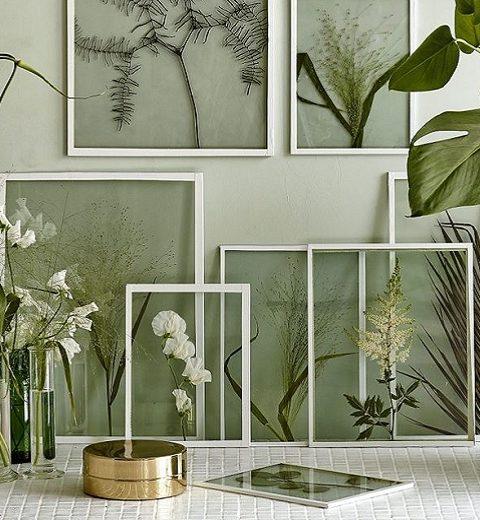 Trend. Gedroogde bloemen aan je muur