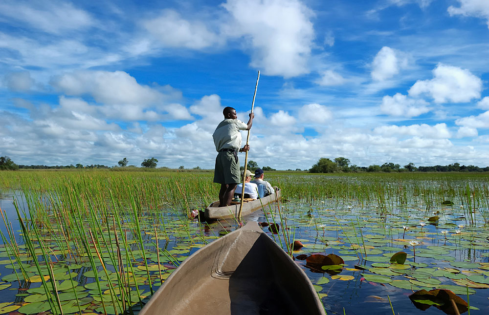 Okavango_Delta_071