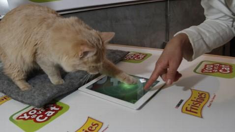 friskies_cat_ipad_game_lt_120312_wblog
