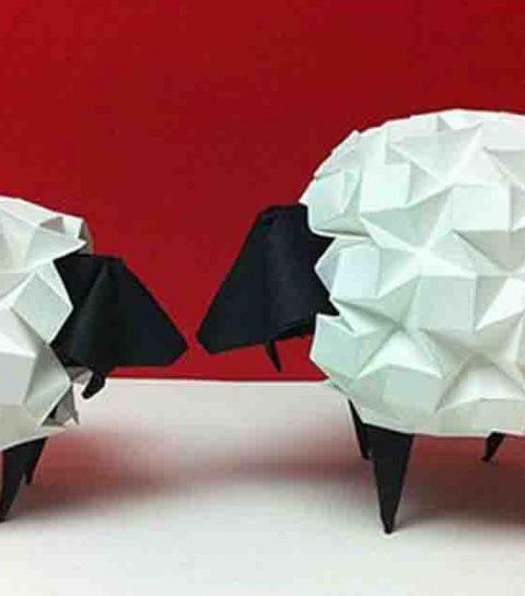 Origami is het nieuwe wondermiddel voor stress