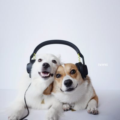 sharingheadphones