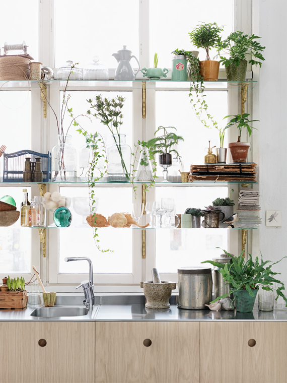 outstanding-bub-and-bean-living-creatively-welcome-to-my-dream-kitchen-with-regard-to-kitchen-window-plants-ordinary