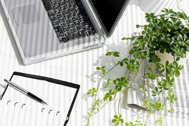 3021742-inline-inline-plant-productivity